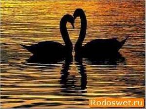 Любовь и привязанность - разница между ними
