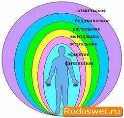 Тонкие тела человека и их виды: физическое тело человека и другие